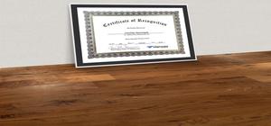 Most Valuable Partner Award